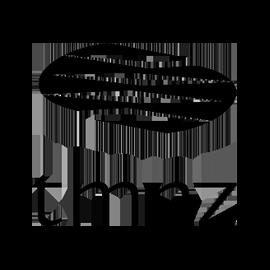 tmnz logo